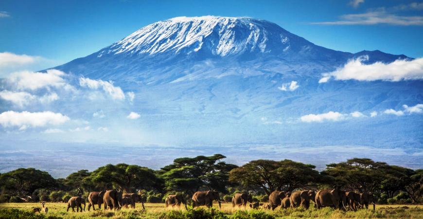3 Days Amboseli Christmas Safari Packages