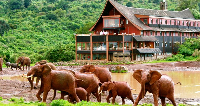 Mt Kenya Region Christmas Holiday Packages