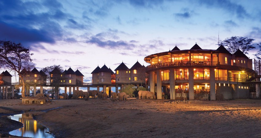 3 Days Tsavo Jamhuri Safari Packages