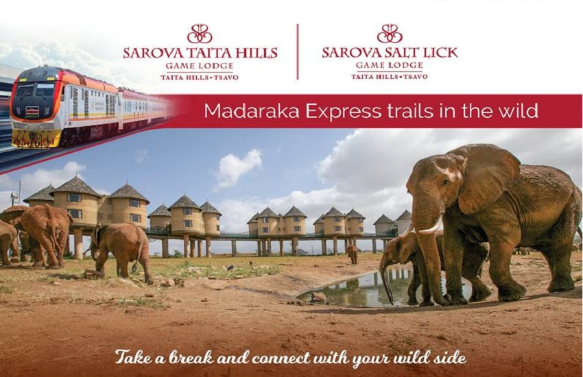 SGR Holiday Packages to Sarova Salt Lick Game Lodge